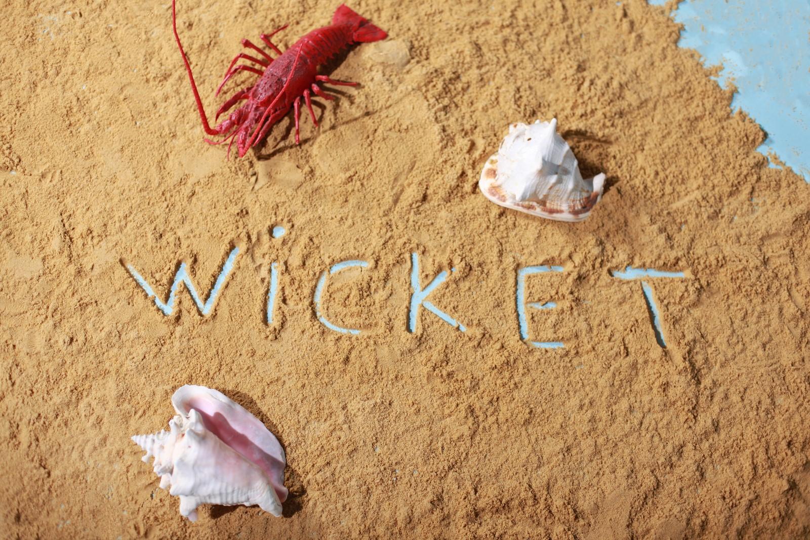 WICKET - LOOK N°9